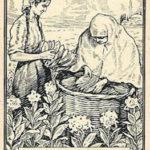 Tabakernte, Tabakblätter, Tabakanbau, Tabakbauern