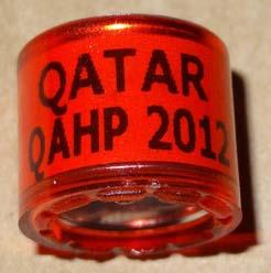 roter Brieftaubenring mit der Aufschrift Qatar