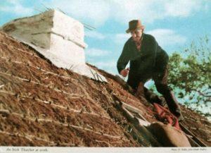 Rieddach, Dach, Hausdach, Dachdecker, Irland