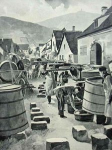 Winzer, Weinanbau