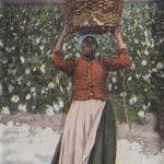 Baumwolle, Arbeiter, Feldarbeit, USA