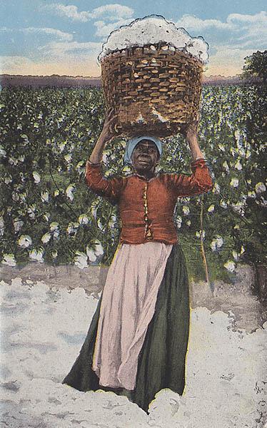AK: Arbeiterin trägt geerntete Baumwolle in einem Korb auf ihrer Schulter