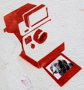 Polaroidkamera, Kamera, Fotograf, Foto, Streetart