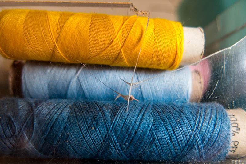 Foto: Nähgarn in blau und gelb