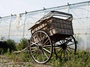 Foto: alter zweirädriger Karren steht vor einem Gewächshaus