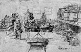 Austernzucht, Austernfischer, Sylt, Austern