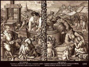 Winzer, Wein, Weinbbauern, Landwirtschaft