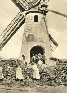 sw-Foto: Frauen und Männer tragen Zuckerrohrbündel in eine Windmühle
