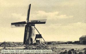 sw-Foto: Zuckerrohr-Windmühle neben Gehöft