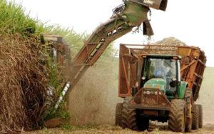 Farbfoto: maschinelle Zuckerrohrernte und Traktor mit Wagon für den Transport