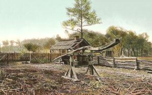 Zuckerhesteller, Zuckerrohr, Zuckerrohrmühle, Landwirtschaft, Florida