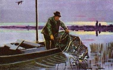 Sammelbild: Fischer auf seinem Boot holt Reuse ein