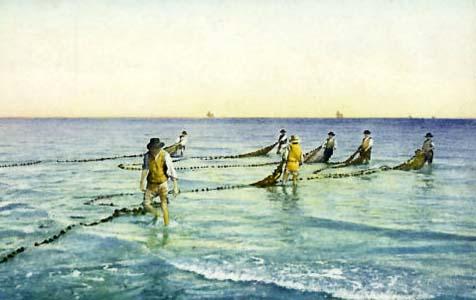 Farbbild: Fischer ziehen großes Fischernetz ins Wasser