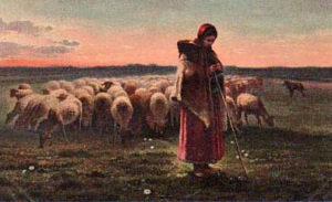 Schäferin, Schafsherde, Schafe