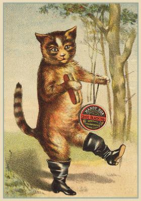 Reklamekarte: Katze in schwarz glänzenden Stiefeln