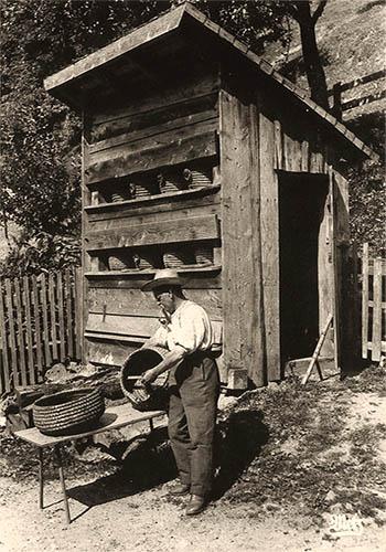sw Foto: Imker mit Pfeife arbeitet vor Bienenhaus an Bienenkörben