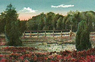 Farbpostkarte: große Anlage in Heidelandschaft