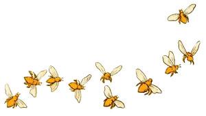 Farbillu: herum fliegende Bienen