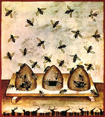 Buchmalerei: drei Bienenkörbe und herum schwirrende Bienen - 14. Jh