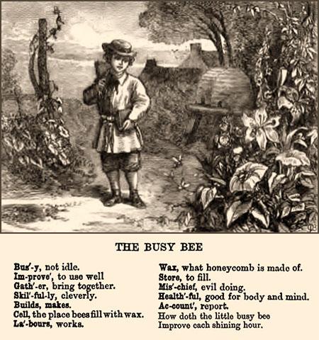 Stich: Knabe mit Notizheft neben Bienenkörben im Garten - 1899