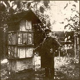 sw-Foto: Dzierzon stehend neben Zwillingsbeutenstand im Bienengarten