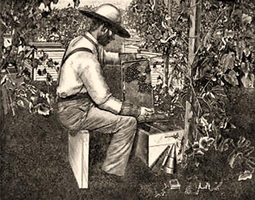 sw Foto: Mann arbeitet sitztend vor Bienenkasten