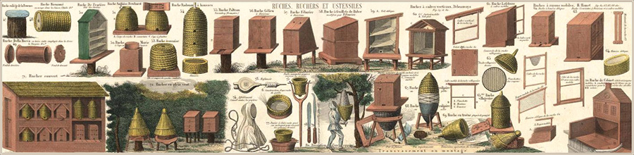 Farblitho: Bienenstöcke und Utensilien