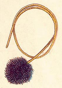 illu: kugelige Bürste am Seil