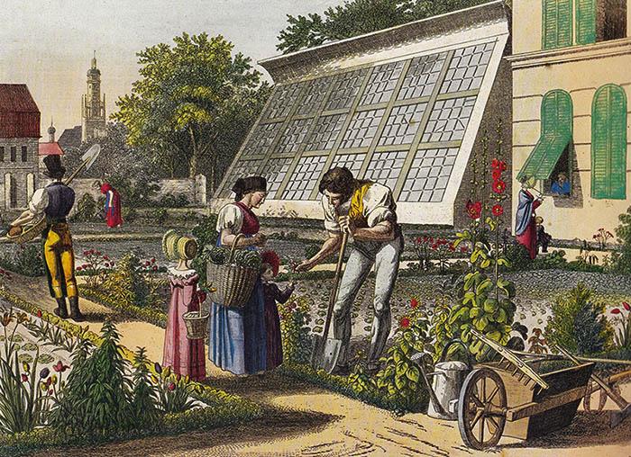 farbige Zeichnung: schöner Garten und großes Gewächshaus