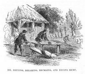 sw-Zeichnung: vorbereiten des Hanfes