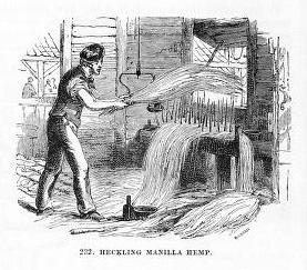 sw-Zeichnung: Mann hechelt Hanf