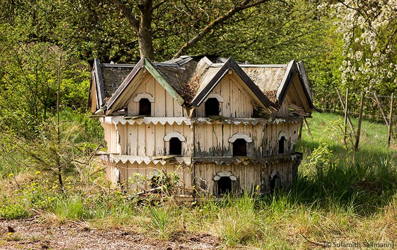 Farbfoto: altes Taubenhaus mit vielen Kammern auf Frühlingswiese