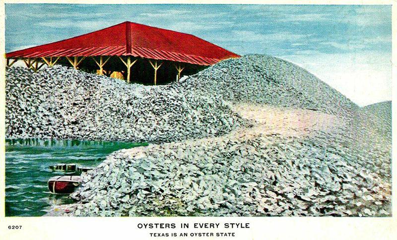 Postkarte: große Haufen Austern