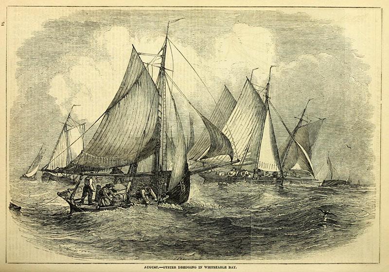 Schiffe auf dem Meer beim Austern bergen