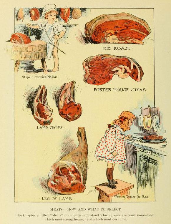 illustrierte Seite mit dem Thema Fleisch aus einem Kochbuch