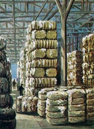 Sammelbild: hohe Baumwollstapel in einem Lager