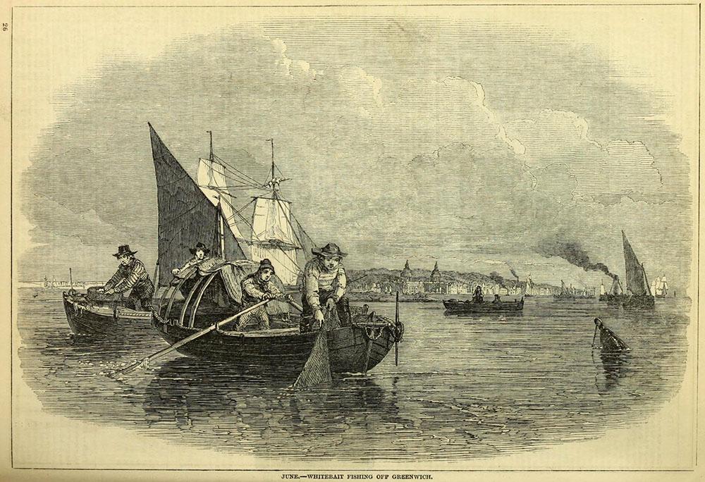 Stich: Fischer auf ihren Booten fangen Fisch mit Netzen
